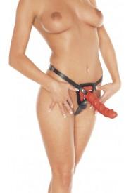 Gode ceinture Rimba - Slip/harnais avec anneau (livré sans dildo)