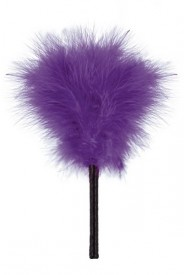 FEATHER PURPLE